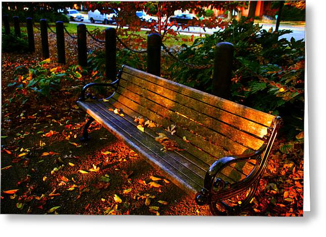 Fall Scenes Greeting Cards - Fall scene and the bench in the park Greeting Card by Susanne Van Hulst