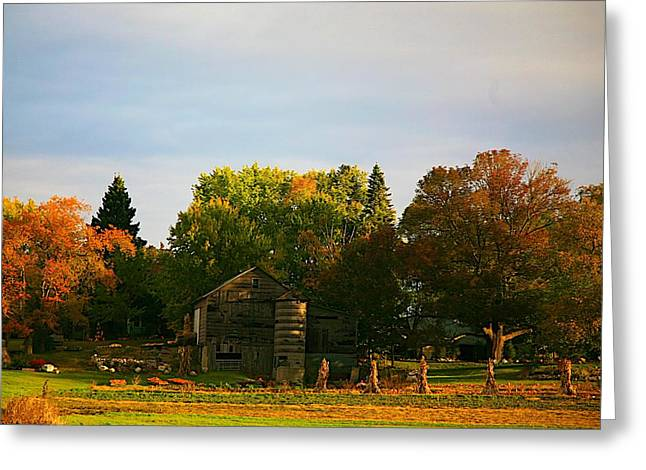 Blue Green Water Mixed Media Greeting Cards - Fall time on the farm Greeting Card by Robert Pearson