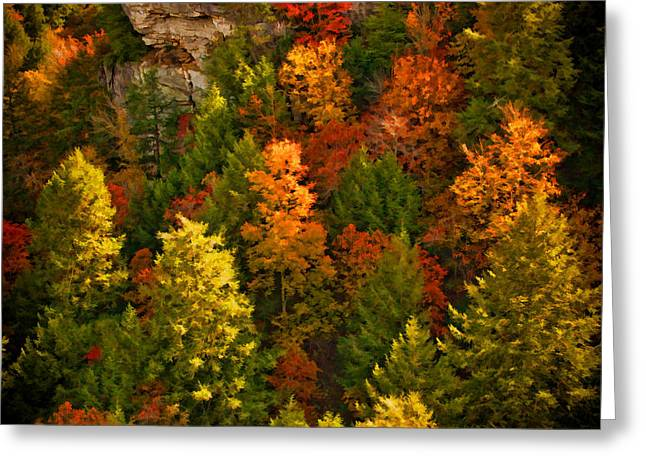 Tennessee River Digital Greeting Cards - Fall Trees Greeting Card by Paul Bartoszek