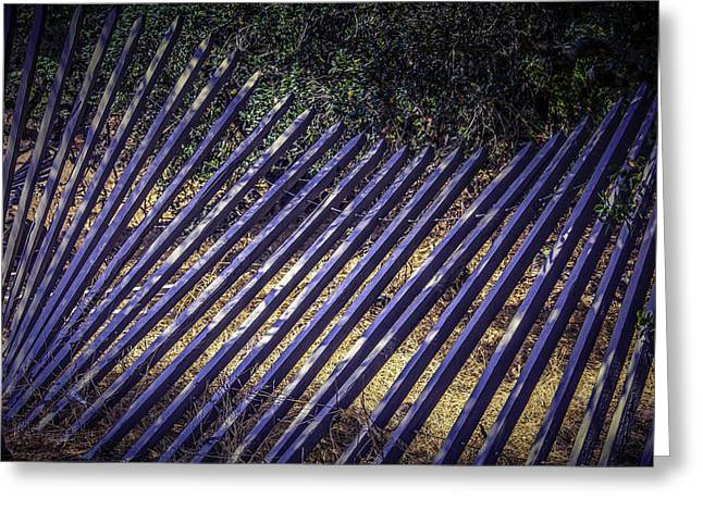 Fencing Greeting Cards - Fallen Fence Greeting Card by Garry Gay