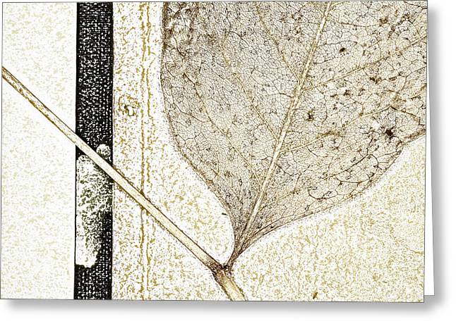 Greeting Cards - Fallen Leaf Two of Two Greeting Card by Carol Leigh