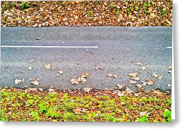 Fallen Leaves Greeting Card by Tom Gowanlock