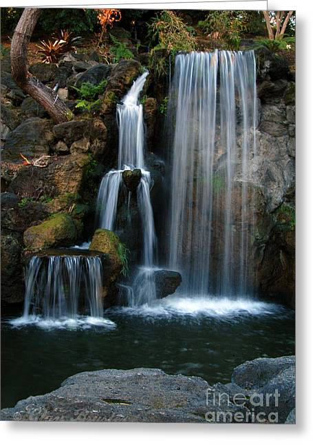 Bruster Greeting Cards - Falling For You Greeting Card by Clayton Bruster