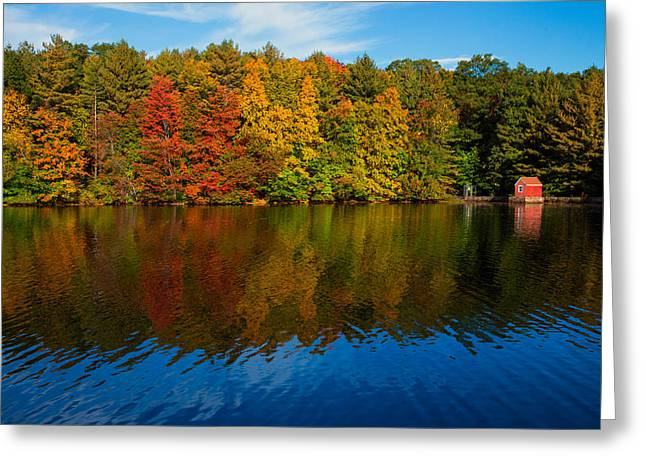 New England Colors Greeting Card by Karol Livote