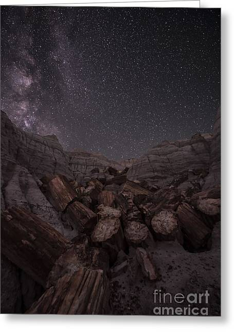 Petrified Forest National Park Greeting Cards - Falling Greeting Card by Melany Sarafis