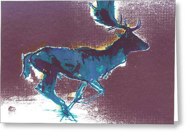 Rudolph Paintings Greeting Cards - Fallow Buck Greeting Card by Mark Adlington