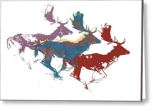 Fallow Bucks Greeting Card by Mark Adlington
