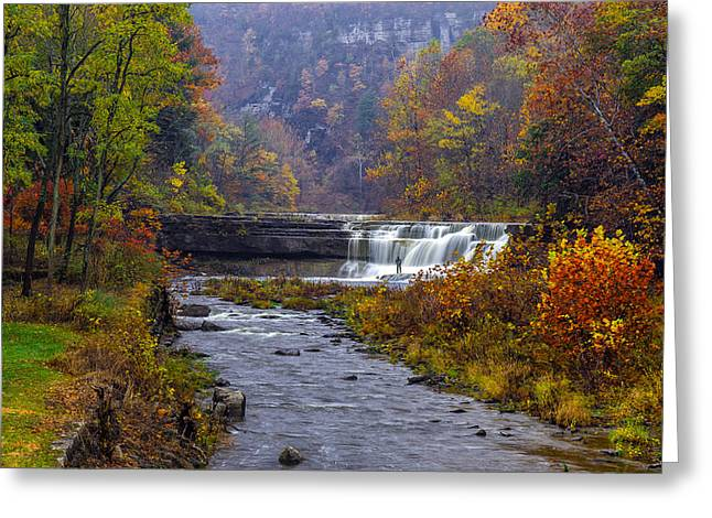 Taughannock Falls State Park Greeting Cards - Falls Fishing Greeting Card by Mark Papke