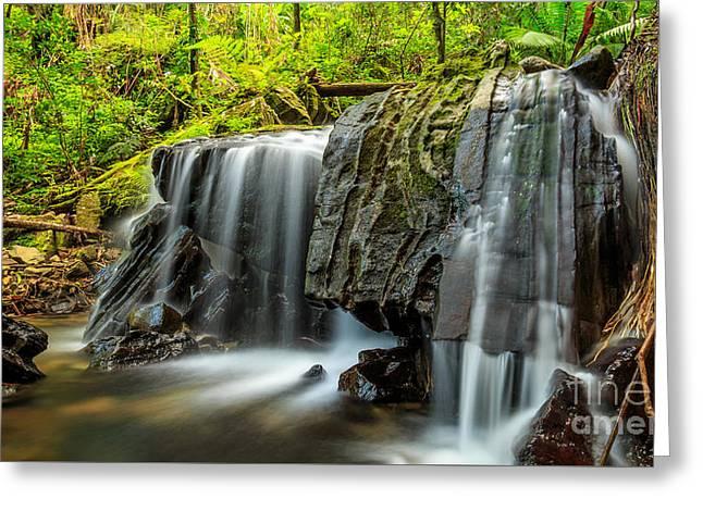El Yunque Greeting Cards - Falls in El Yunque Greeting Card by Ernesto Ruiz