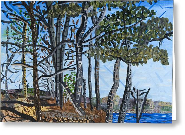 Falls Lake At Blue Jay Point Greeting Card by Micah Mullen