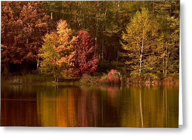 Bedford Hills Greeting Cards - Falls Reflection on Swan Lake Greeting Card by Bedford Shore Photography