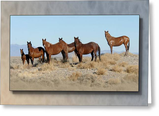 The Horse Greeting Cards - Family Band Greeting Card by Marilyn Gregory
