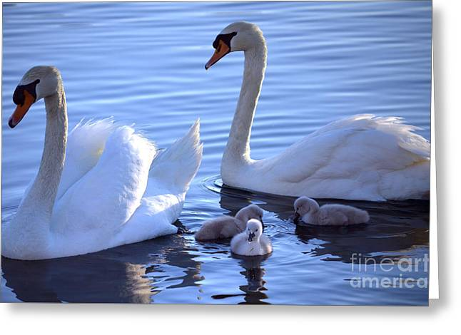 Innocence Greeting Cards - Family Outing Greeting Card by Deb Halloran
