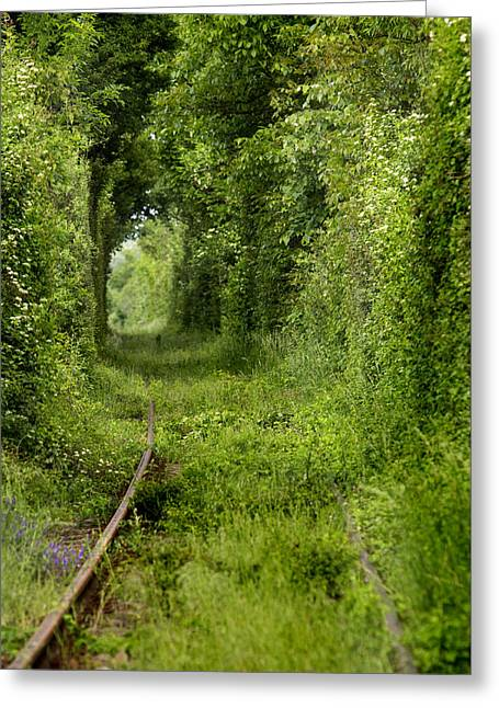 Mystical Landscape Greeting Cards - Famous Tunnel of Love location Greeting Card by Sandra Rugina