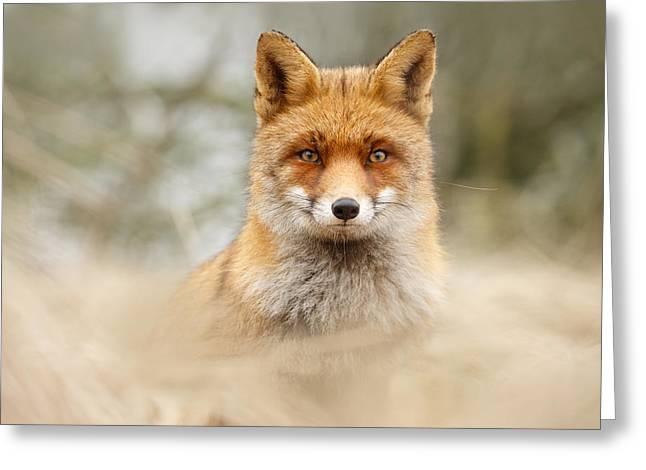 Fantastic Mr Fox Greeting Card by Roeselien Raimond