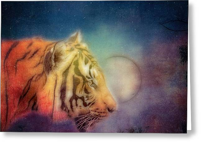Wildcat Greeting Cards - Fantasy Greeting Card by SK Pfphotography