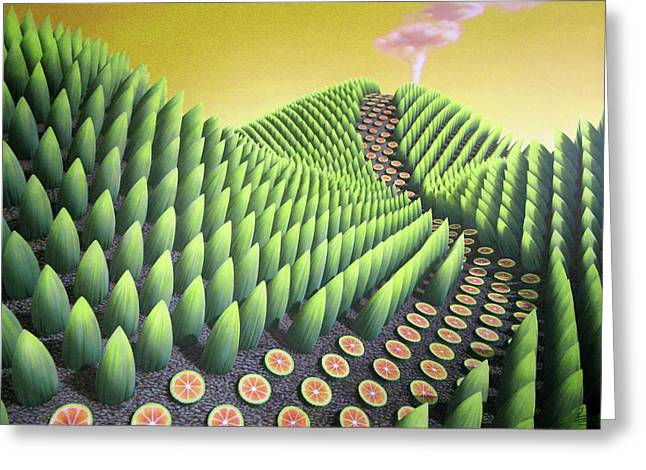 Surreal Landscape Greeting Cards - Fargesia victualia Greeting Card by Patricia Van Lubeck