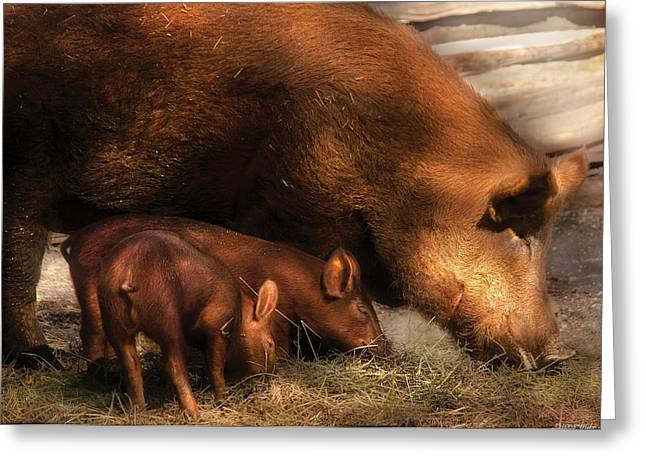 Eat Free Greeting Cards - Farm - Pig - Family Bonds Greeting Card by Mike Savad
