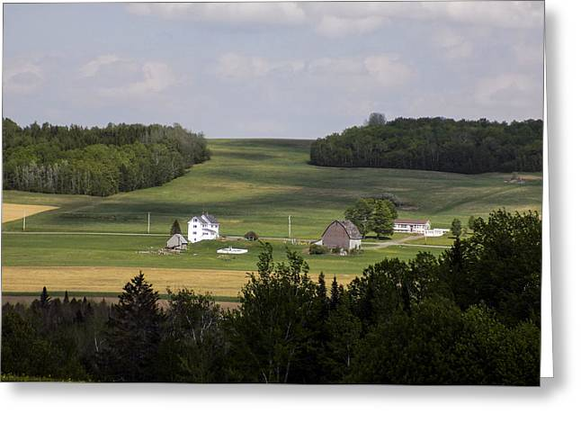 Maine Agriculture Greeting Cards - Farm Across the River Greeting Card by William Tasker