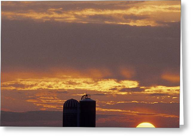 Farm at sunset Greeting Card by Steve Somerville