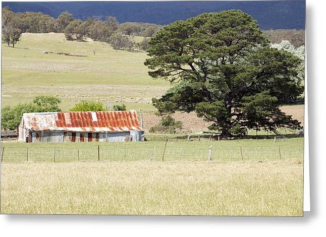 Vale Greeting Cards - Farm Buildings Greeting Card by Nicholas Blackwell