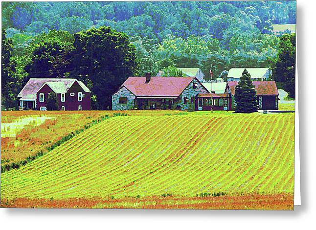 Farm Homestead Greeting Card by Susan Savad