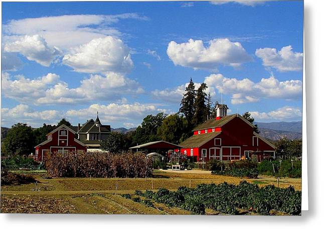 Farm House Greeting Card by Scott Brown