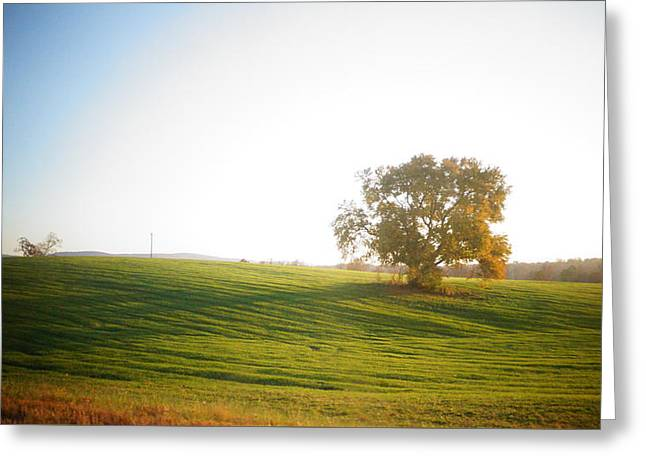 Green And Yellow Greeting Cards - Farm Greeting Card by Keegan Hall