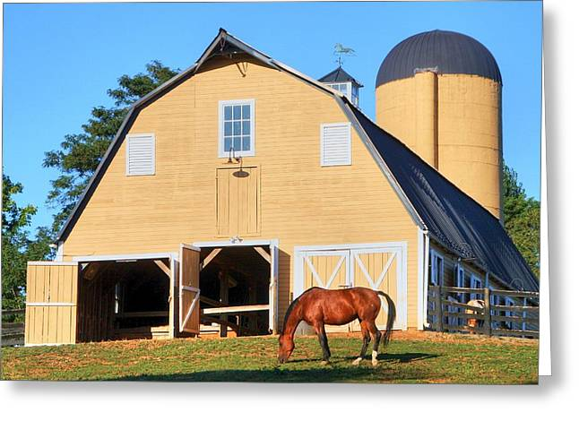 Old Farms Greeting Cards - Farm Greeting Card by Mitch Cat