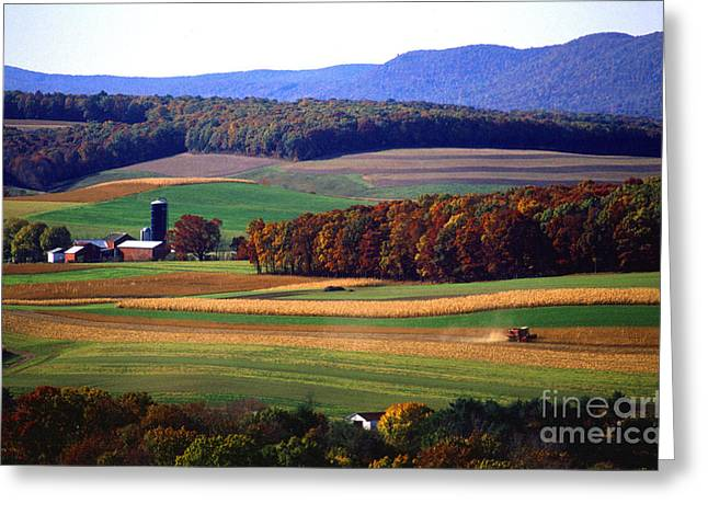 Aerial Photograph Greeting Cards - Farm near Klingerstown Greeting Card by USDA and Photo Researchers