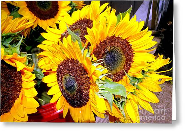 Farm Stand Greeting Cards - Farm Stand Sunflowers #1 Greeting Card by Ed Weidman