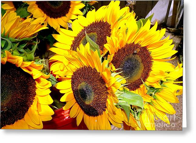 Farm Stand Greeting Cards - Farm Stand Sunflowers #2 Greeting Card by Ed Weidman
