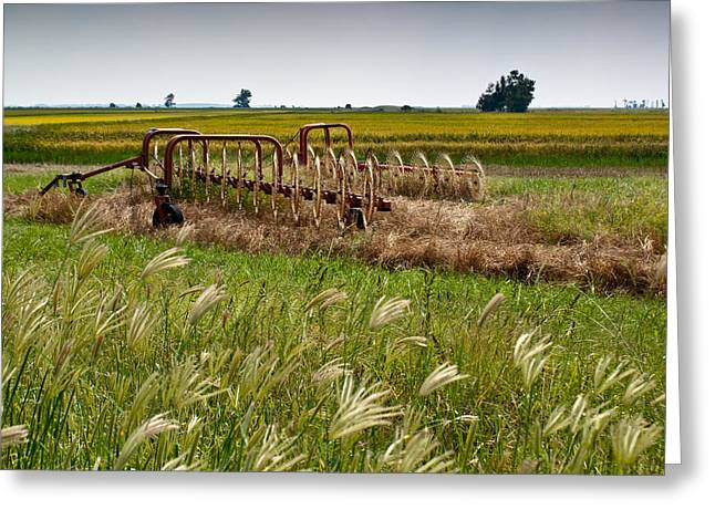 Lawrence County Greeting Cards - Farm Work Wiind and rain Greeting Card by Douglas Barnett