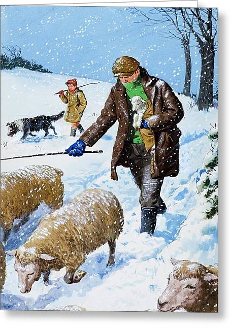 Rural Landscapes Drawings Greeting Cards - Farmers bringing in their sheep Greeting Card by Clive Uptton
