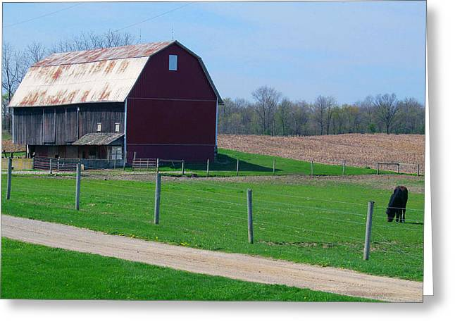 Lawn Chair Greeting Cards - Farmlife Greeting Card by Tina M Wenger
