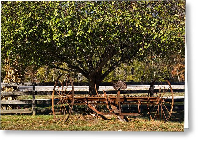Tennessee Farm Greeting Cards - Farmtime Greeting Card by Douglas Barnett