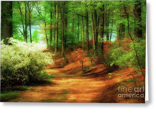 Spring Flowers Digital Art Greeting Cards - Favorite Path Greeting Card by Lois Bryan