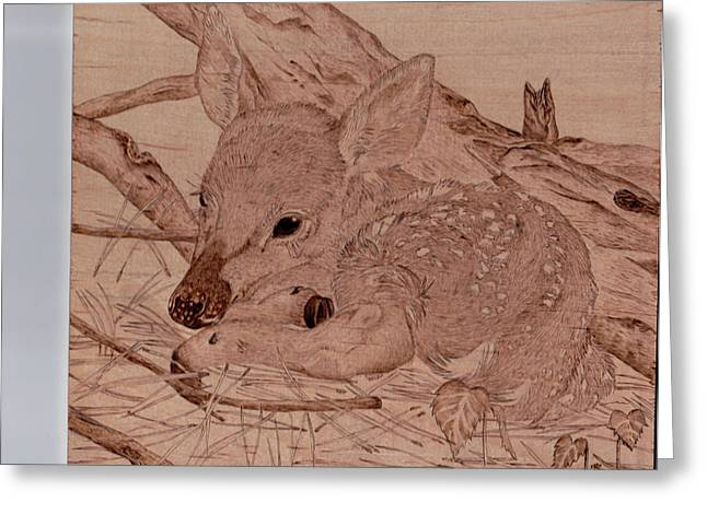 Pine Needles Pyrography Greeting Cards - Fawn in cover Greeting Card by Angel Abbs-Portice