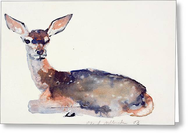 Fawn Greeting Card by Mark Adlington