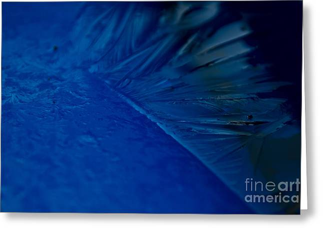 Feather Of Ice Greeting Card by Sverre Andreas Fekjan