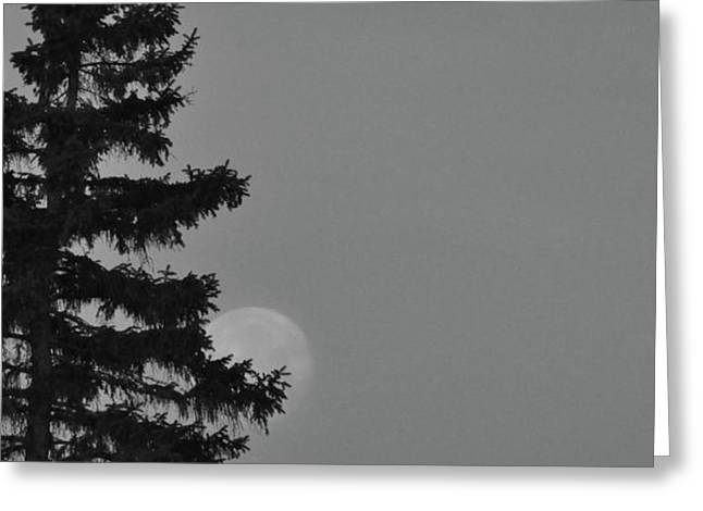 February Morning Moon Greeting Card by Maria Suhr
