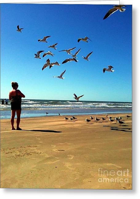 Women Action Sports Art Prints Greeting Cards - Feeding The Seagulls Greeting Card by Venus