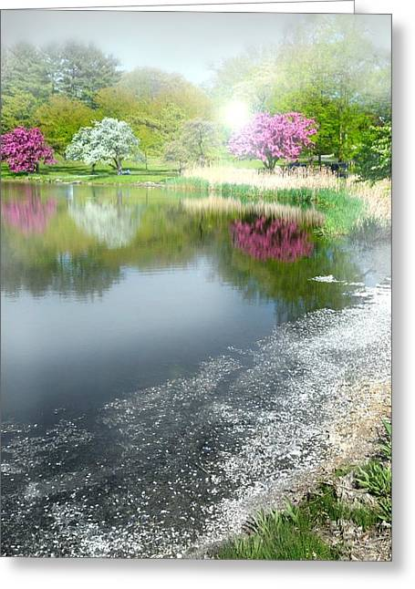 Pond In Park Greeting Cards - Feel The Need In Me Greeting Card by Diana Angstadt