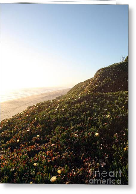 Pacific Ocean Prints Greeting Cards - Feels like home Greeting Card by Amanda Barcon