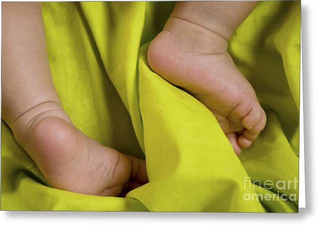 Parenthood Greeting Cards - Feet of a newborn baby  Greeting Card by Shahar Tamir