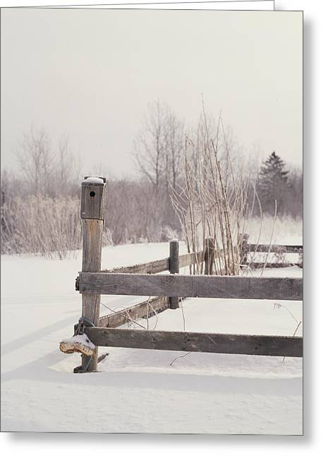 Birdhouse Greeting Cards - Fence And Birdhouse In The Snow Greeting Card by Gillham Studios