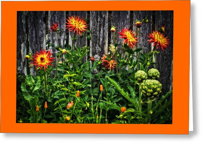 Fence And Floral Greeting Card by Thom Zehrfeld