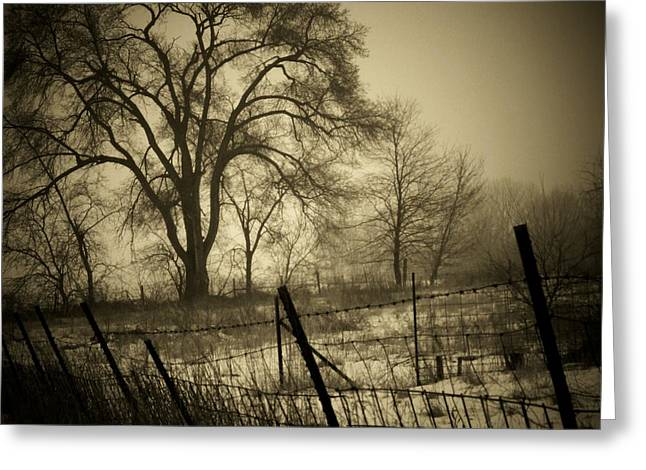 Fence And Tree Greeting Card by Michael L Kimble