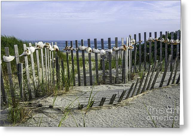 New England Ocean Greeting Cards - Fence at Nantucket Greeting Card by Amanda Sinco
