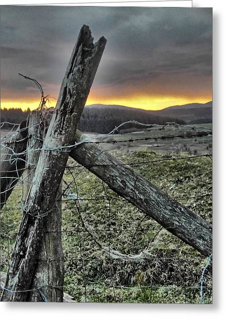 Fence At Sunset Greeting Card by Brainwave Pictures